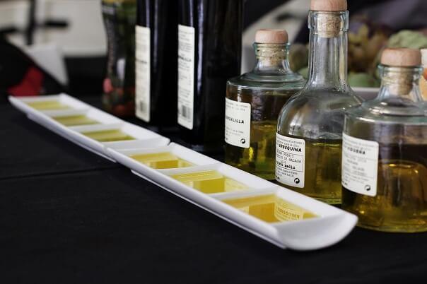 Olivenoel Verkostung Malaga