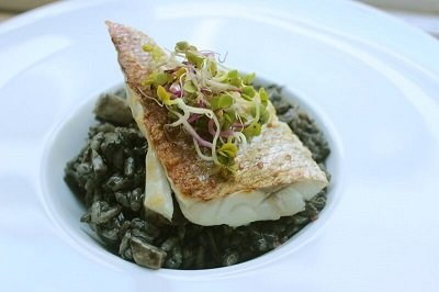 English Cooking Classes in Marbella