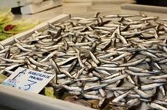 white anchovies malaga