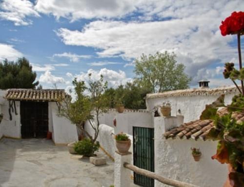 Die 10 besten Summer Food Festivals in Malaga