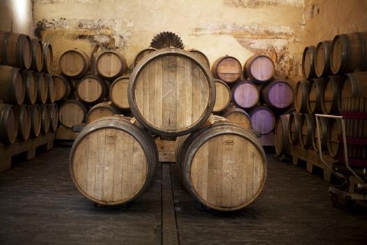cata de vinos en ronda