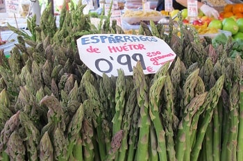 huetor tajar asparagus