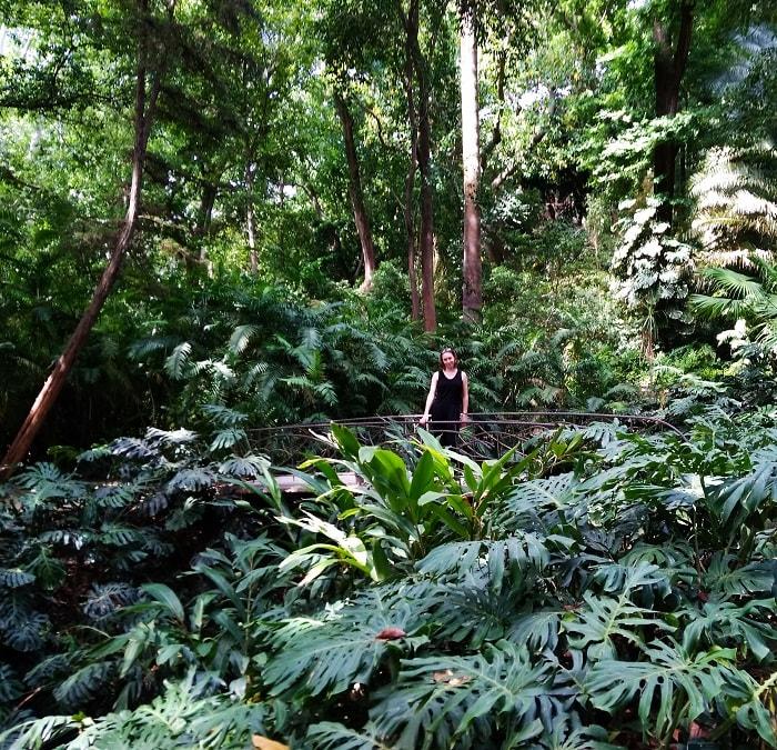 La concepcion botanical garden malaga