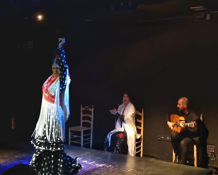 MIMA flamenco show malaga