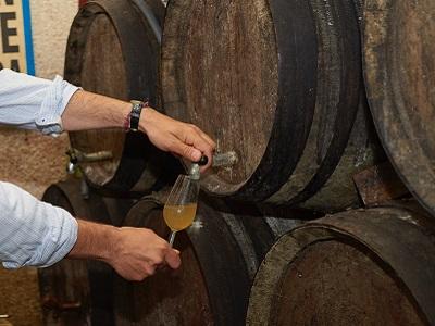 montilla moriles white wine
