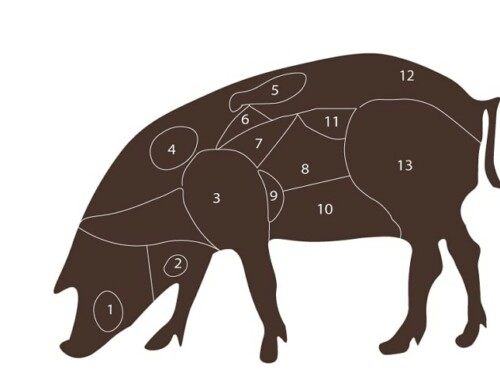 The Iberian Pig, All the Cuts Explained